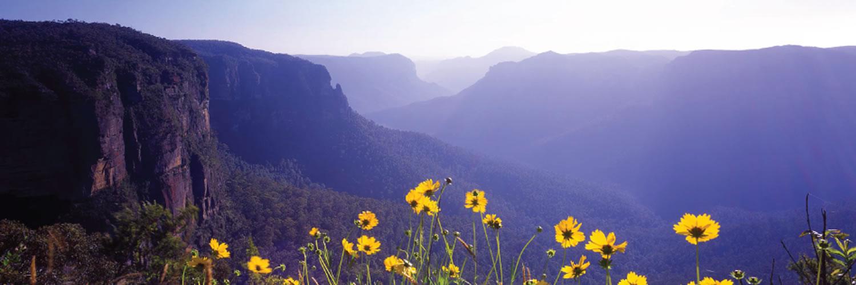 blue-mountains-views